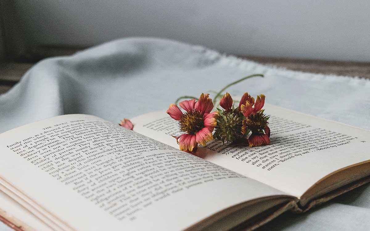 Wildflowers on an open book